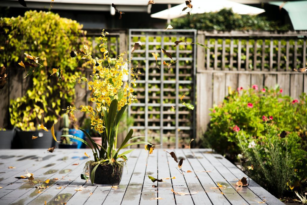 Garden improvements that will add value to your property